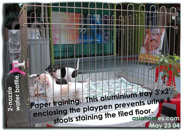 Play pen with Aluminium Tray preventing its collapse onto puppies.