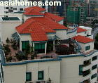 The Camelot penthouses may be available for rent. Tel +65 9668 6468  asiahomes.com