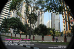 Richmond Park condos rent salel-Singapore-asiahomes-rental-sales.jpg
