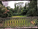 Singapore black & white bungalows for rent  - balcony off family room faces garden