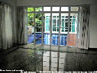 Singapore modern bungalow, small garden plot for rent - pool