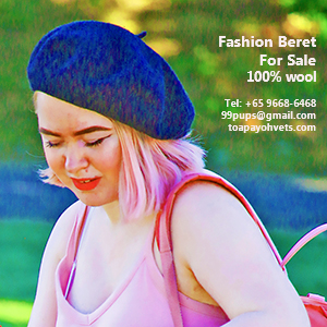 Fashion berets of the finest Merino sheep wool made in New Zealand, judy@asiahomes.com