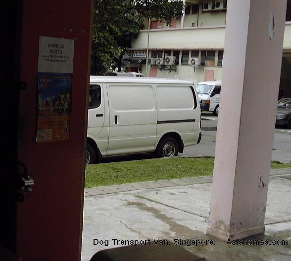 0909Singapore Alsatian nervous fever transport veterinary