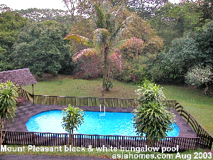 Large gardens 50,000 sq ft, big pool, privacy and Nature - Mount Pleasant black & white bungalows, Singapore