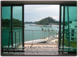 Singapore Condo - Caribbean @ Keppel Bay penthouse balcony