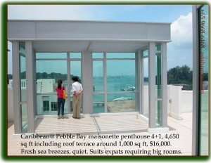 Singapore Condo - Caribbean @ Keppel Bay  - roof terrace of penthouse