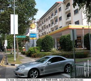 To rent Alocassia Serviced Apartments, Singapore, tel  +65 9668 6468, asiahomes.com