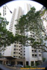 Ion_Orchard_cat-pyometra/20120324tn_Somerset-Grand-Cairnhill-Singapore-asiahomes-sat-mar-25-2012.jpg