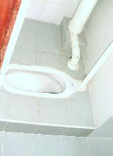 Squatting toilet bowl retained during renovation.