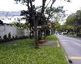 Sixth Avenue between Holland Road and Bukit Timah Road, near Regent Villas