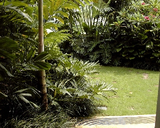 back garden opens to a beautiful long piece of grassland outside the