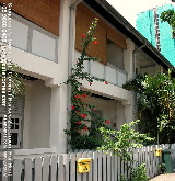 Grow your won hibiscus flowers to beautify the Townerville Colonial House, Singapore